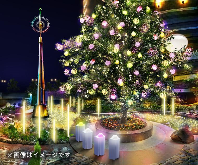 4,知識の木
